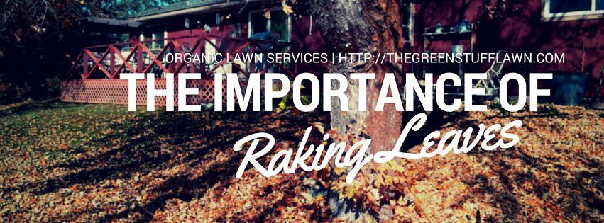 importance of raking leaves