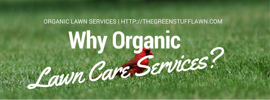 Why Organic Lawn Care Services?