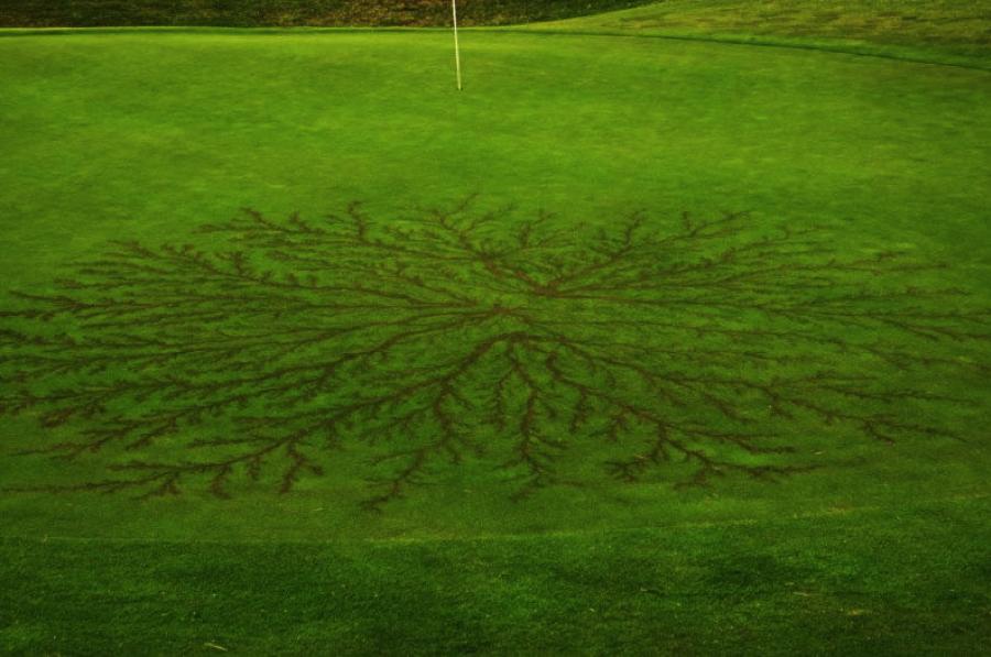 green stuff golf